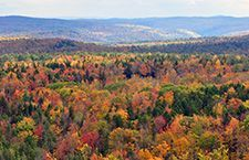 fall-foliage-hogback-mountain